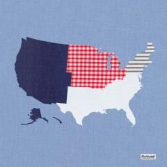 Mapplique USA Regions Cushion Full